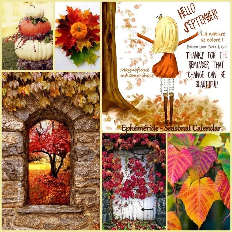 Photos d'automne - Page 2 21232011
