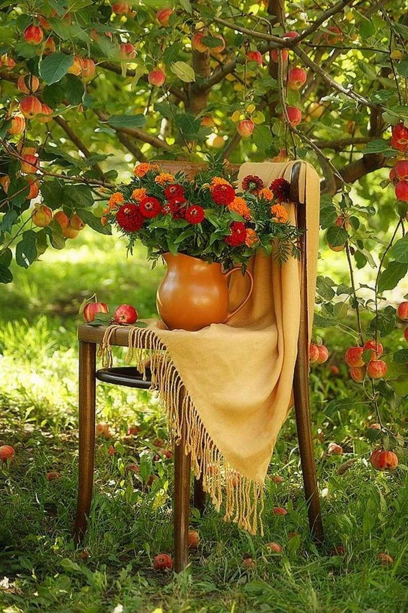 Photos d'automne - Page 2 21994210
