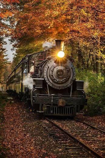 Photos d'automne - Page 2 22154410