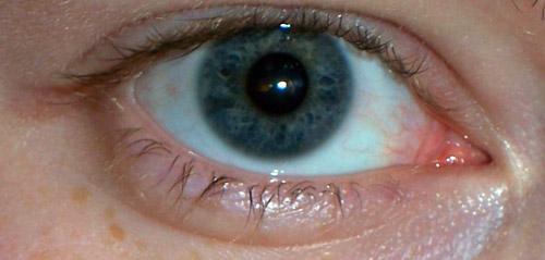 vos yeux! ( attention âmes sensibles: oeil en gros plan ^^) - Page 2 100_6910
