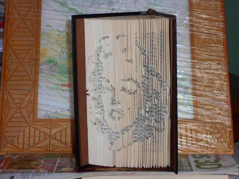 Pliage de livres - Page 3 Dscn0713