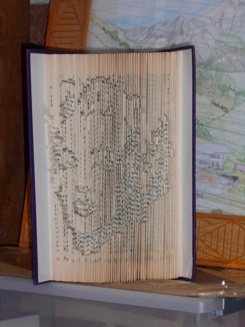 Pliage de livres - Page 3 Dscn0714