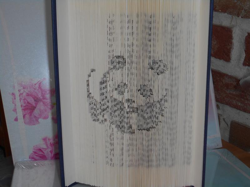 Pliage de livres - Page 3 Dscn0715