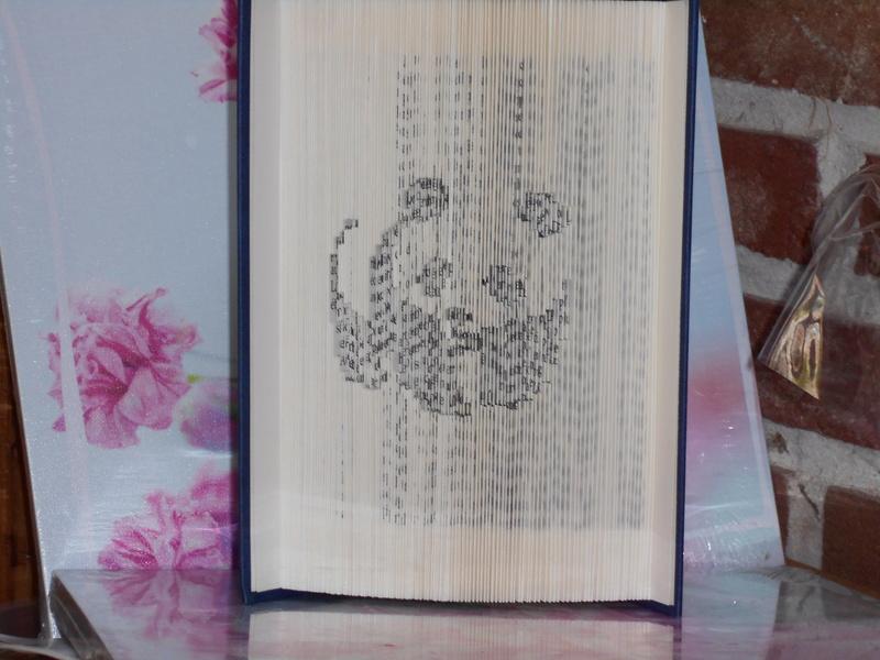 Pliage de livres - Page 3 Dscn0716