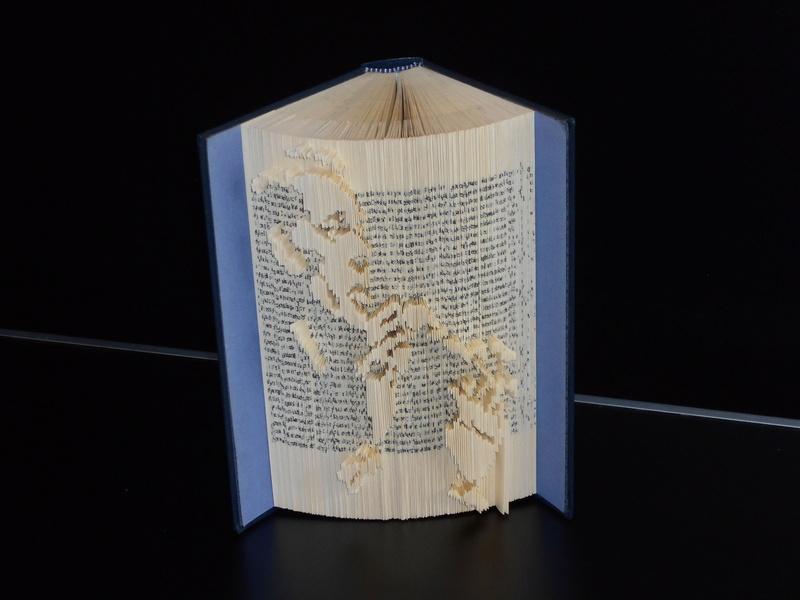 Pliage de livres - Page 4 Dscn0721