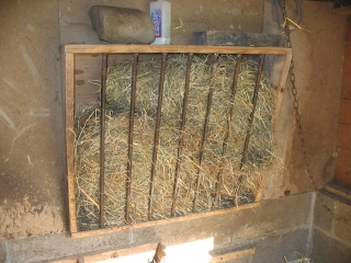 La chèvre naine Cabane11