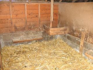La chèvre naine Cabane12