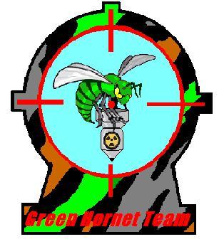 La Green Hornet Team