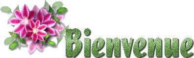 Présentation GaëlHSC Bienve41