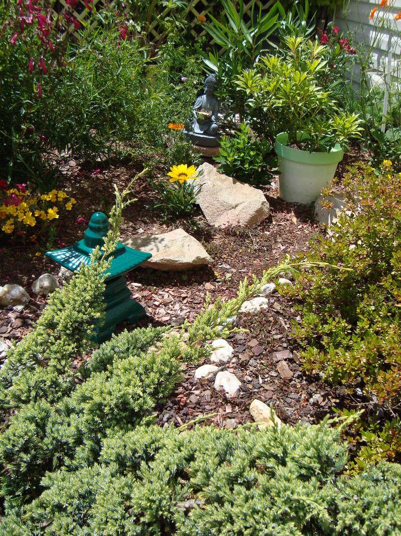 Mon jardin potager Dsc03710