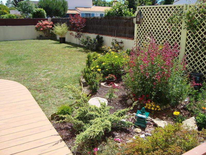 Mon jardin potager Dsc03711