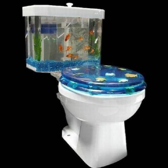 [HELP] Aquarium forme particulière Wc10