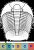 Super-famille Dikelocephaloidea