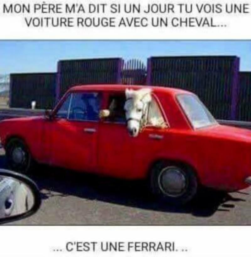 Humour automobile - Page 16 22045910