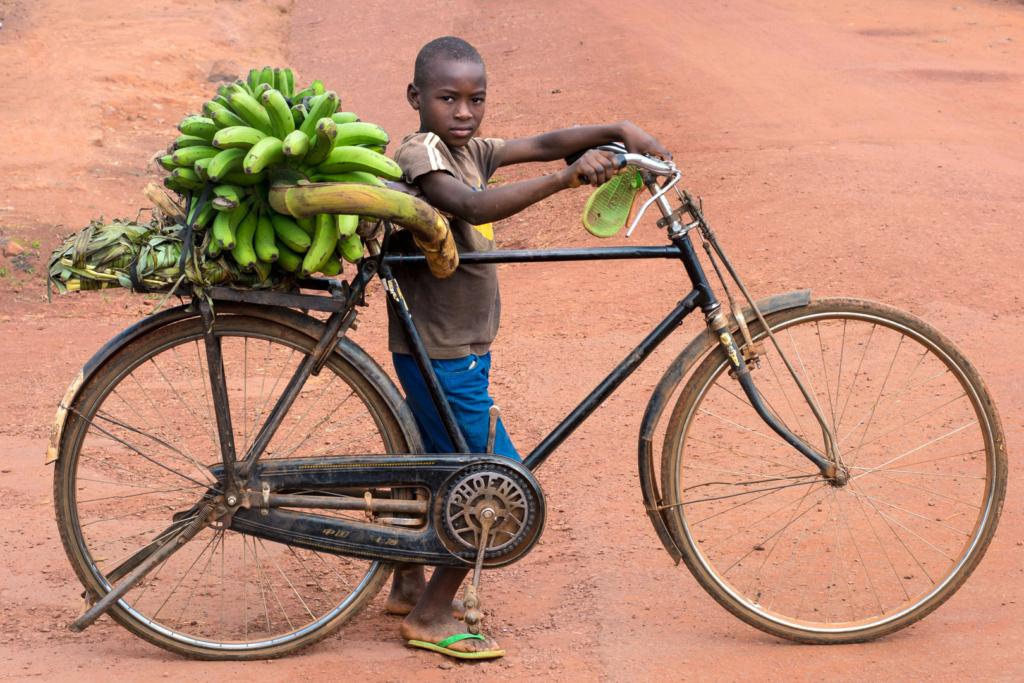 [Technique] Rénovations, réparations, optimisations et bidouilles autour du vélo Africa15