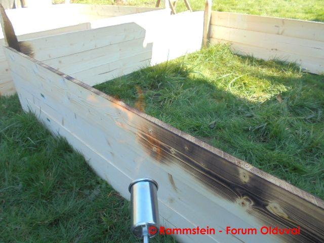 [Jardinage] Culture en bacs et Hügelkultur Dsc02614