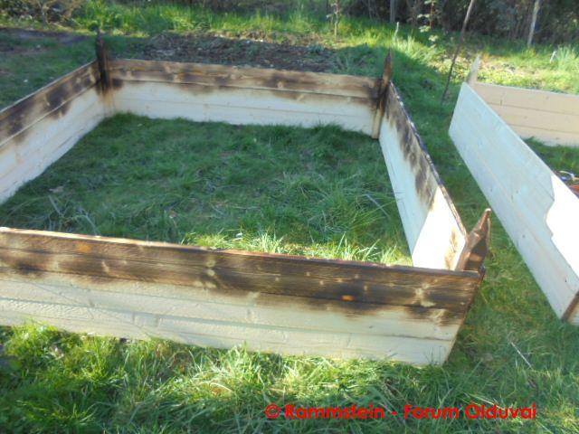[Jardinage] Culture en bacs et Hügelkultur Dsc02616