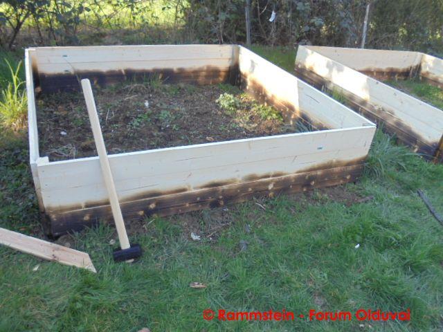 [Jardinage] Culture en bacs et Hügelkultur Dsc02619