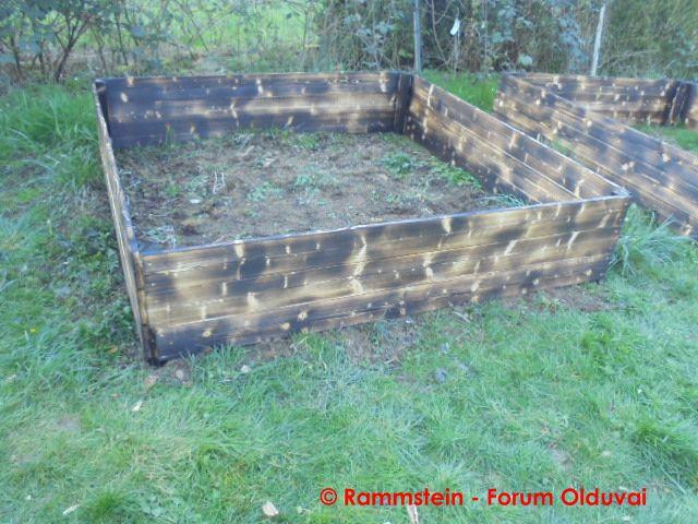 [Jardinage] Culture en bacs et Hügelkultur Dsc02620