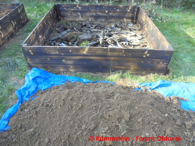 [Jardinage] Culture en bacs et Hügelkultur Dsc02624