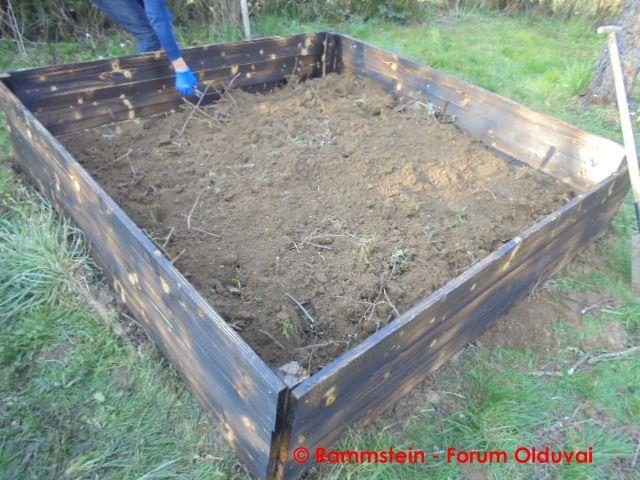 [Jardinage] Culture en bacs et Hügelkultur Dsc02625