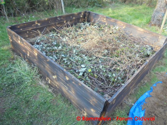 [Jardinage] Culture en bacs et Hügelkultur Dsc02626