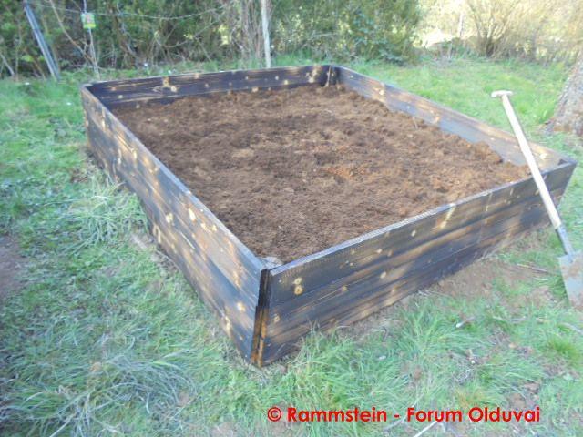 [Jardinage] Culture en bacs et Hügelkultur Dsc02627