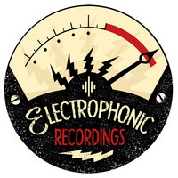 Electrophonic Recordings Studio Avatar10
