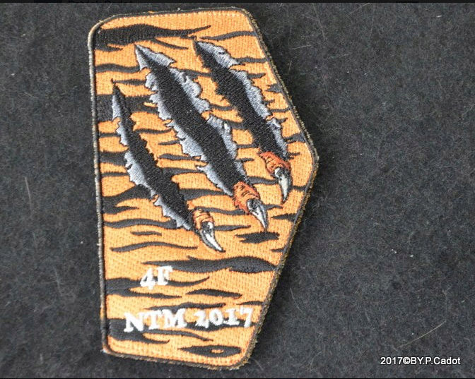 DEBRIEFING MEETING du 6 au 16 Juin Tiger Meet LANDIVISIAU - Page 2 Captur44