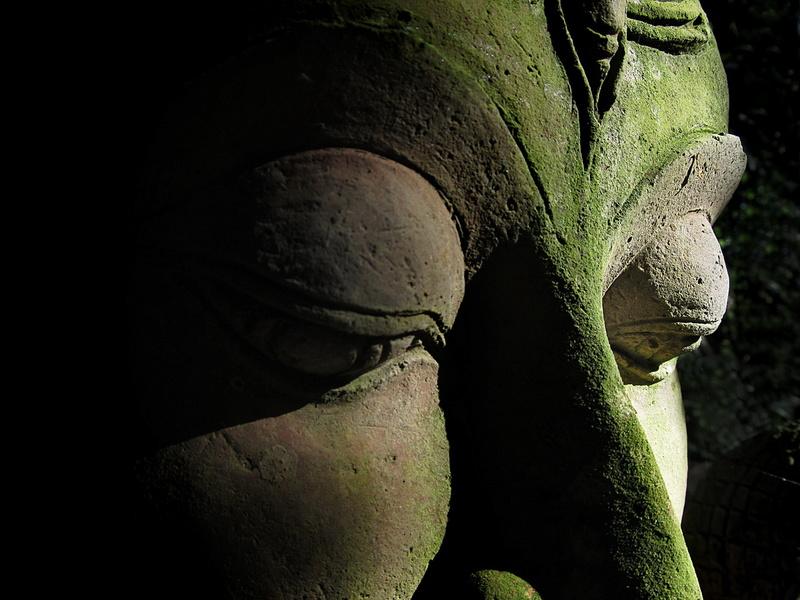 Les Fondements du Bouddhisme: Les deux vérités Et les Quatre Nobles Vérités Buddha10