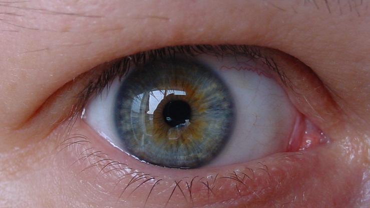 vos yeux! ( attention âmes sensibles: oeil en gros plan ^^) Dsc00116