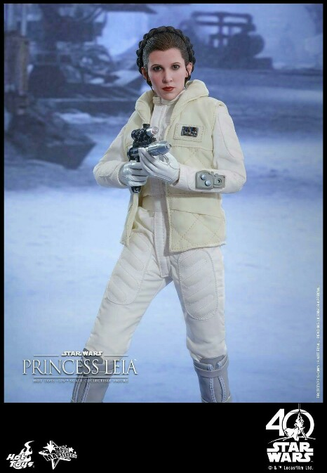 Star Wars: The ESB 1/6th scale Princess Leia Collectible Fig 14939014