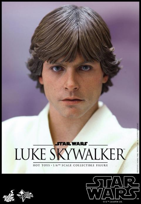 Hot Toys Star Wars EP4 1/6th Luke Skywalker Figure  Hot_to20
