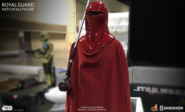 Hot Toys Star Wars - Royal Guard Sixth Scale Figure Royalg10