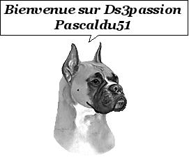 [Pascaldu51] DS3 THP 156 découvrable noire trame DS Gs_98210
