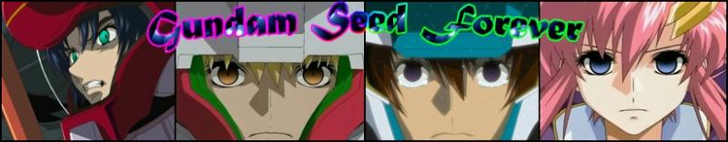 Gundam seed Forever