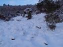 Balade dans la neige 2010-114