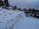 Balade dans la neige 2010-115