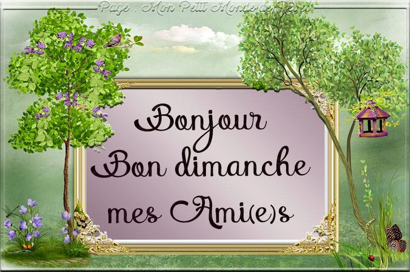 Ici on se dit bonjour  - Page 2 Dimanc11