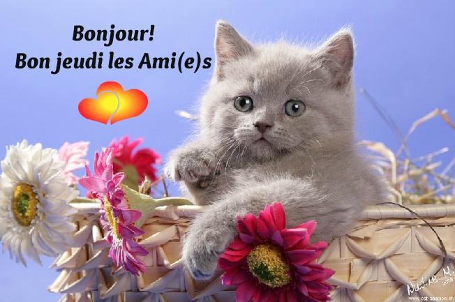Ici on se dit bonjour  - Page 2 Jeudi_10