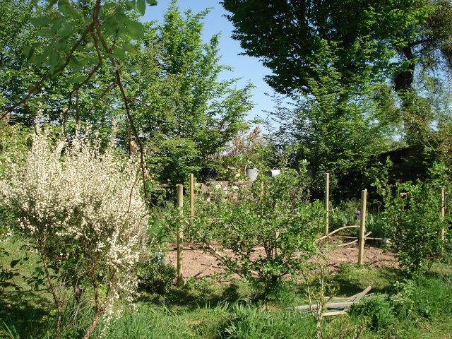 le jardin de Giroflee 23-0_015