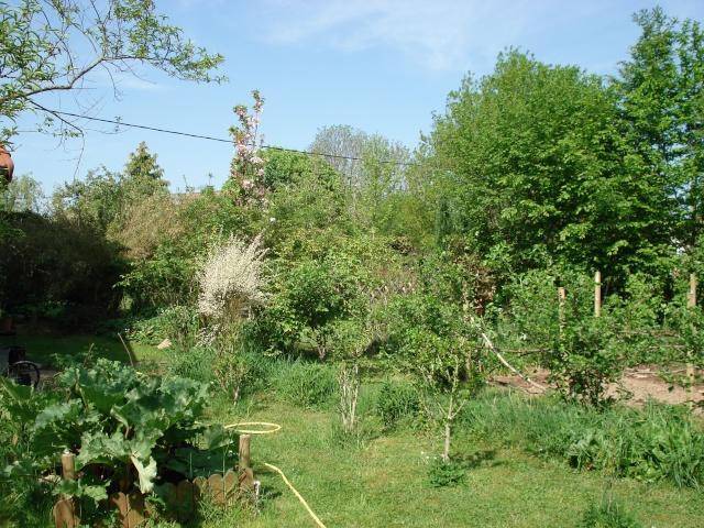 le jardin de Giroflee Jardin36