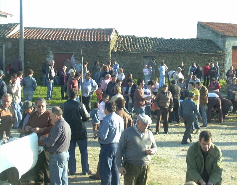 Fotografias do S. Martinho - 2006 Dsc00021