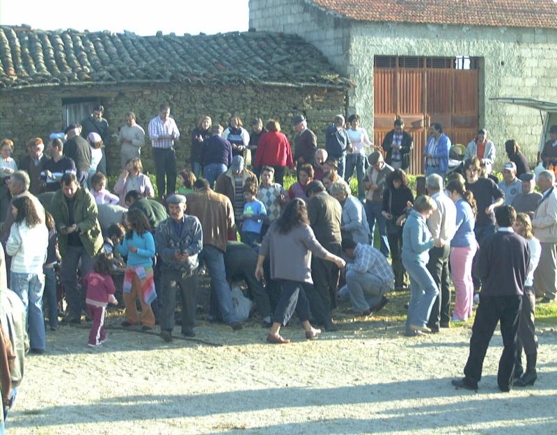 Fotografias do S. Martinho - 2006 Dsc00023