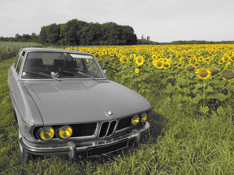 BMW 3.0L si (restauration) - Page 14 Dscn3820