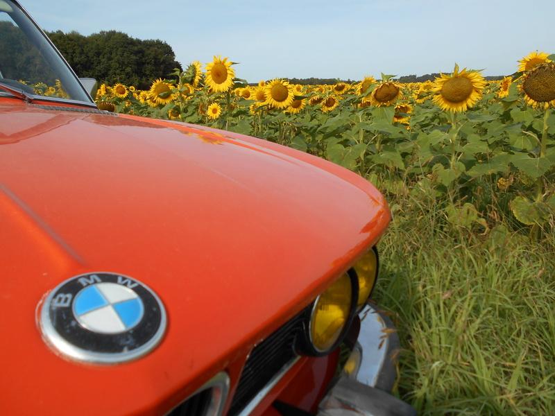 BMW 3.0L si (restauration) - Page 14 Dscn3822