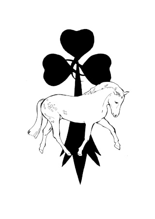 Poneys Connemara Bretagne