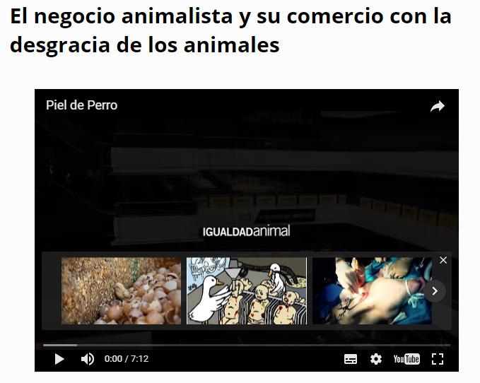 PROYECTO GALGO ARGENTINA  UNA MAQUINA DE GANAR DINERO Animal10