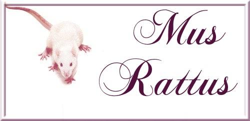 Mus-Rattus