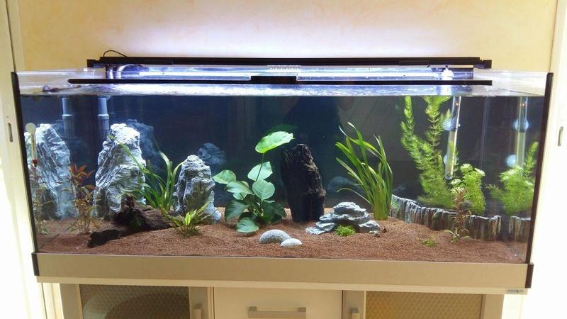 présentation 300 litres Aqua_d10